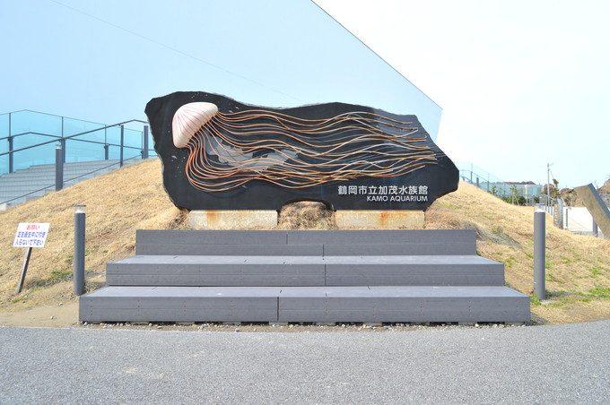 加茂水族館-入り口の写真スポット