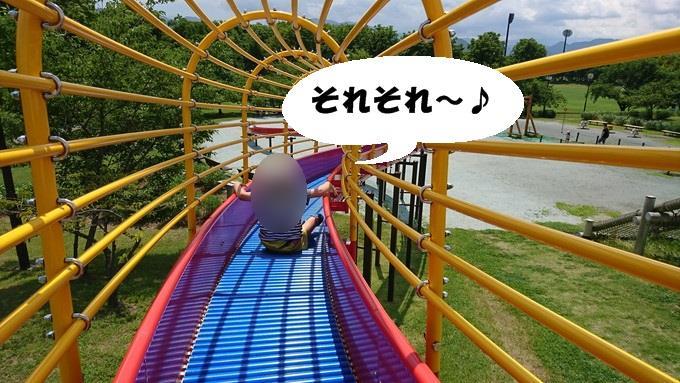 総合運動公園_遊びの森4
