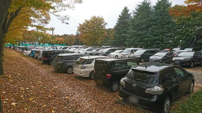 県総合運動公園のいちょう並木を見に行ったときの駐車場の様子