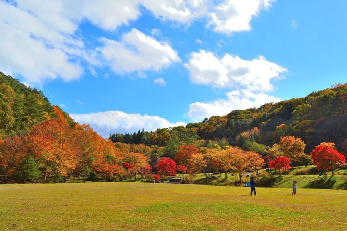 山形県民の森-紅葉もみじまつり-芝生広場