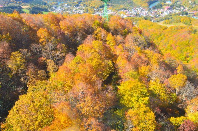 【まとめ】山形の紅葉おすすめスポット|体験レポを紹介