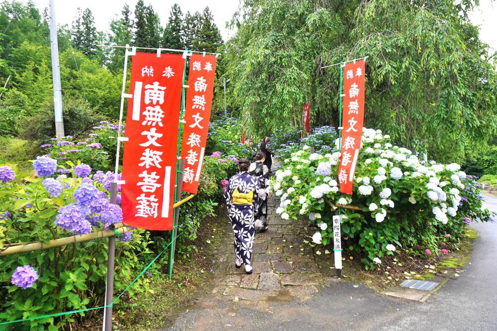 出塩文殊堂-あじさい寺-参道2